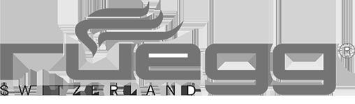 Logo Ruegg Cheminées contemporaines Sparte Saint Orens Toulouse poêle à granulés