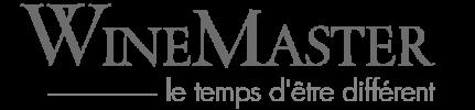 Logo WineMaster Cheminées contemporaines Sparte Saint Orens Toulouse poêle à granulés